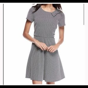 NWT Cynthia Steffe Jacquard Knit PolkaDot Dress